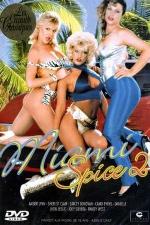 Miami Spice 2 - DVD