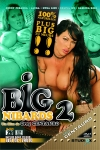 Big nibards 2 - DVD